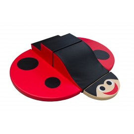 Course ladybug
